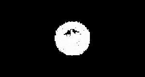 unifg logo